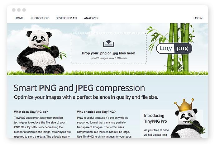 Bilder optimieren fürs Web – Tools, Dateiformate & Plugins 5