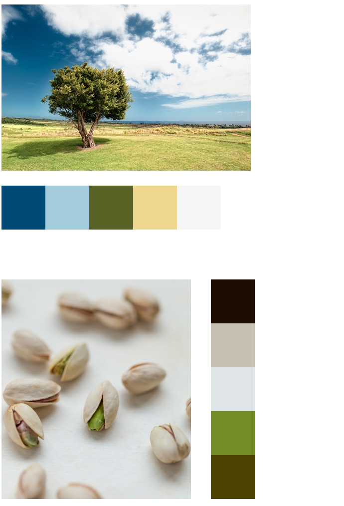 Farbkombinationen aus Fotos