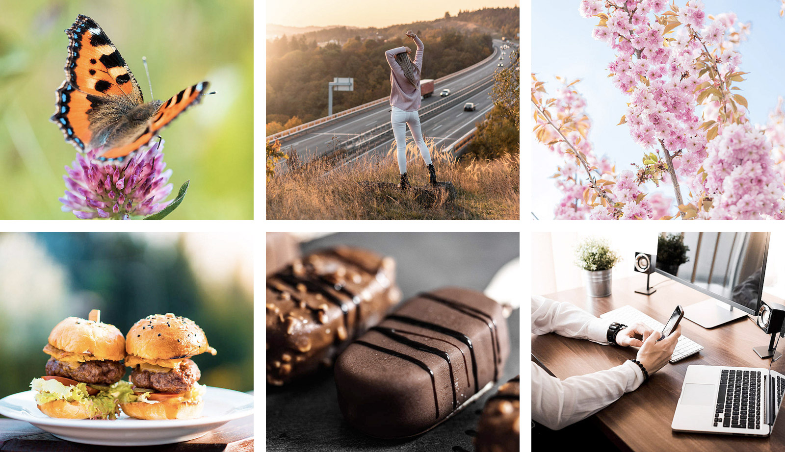 Exemplarische picjumbo.com-Bilder. Freie hochwertige Fotos.